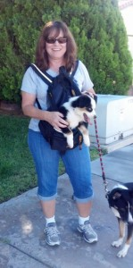 A PurrFurred Pet Care Service (More than one way to walk a dog!)